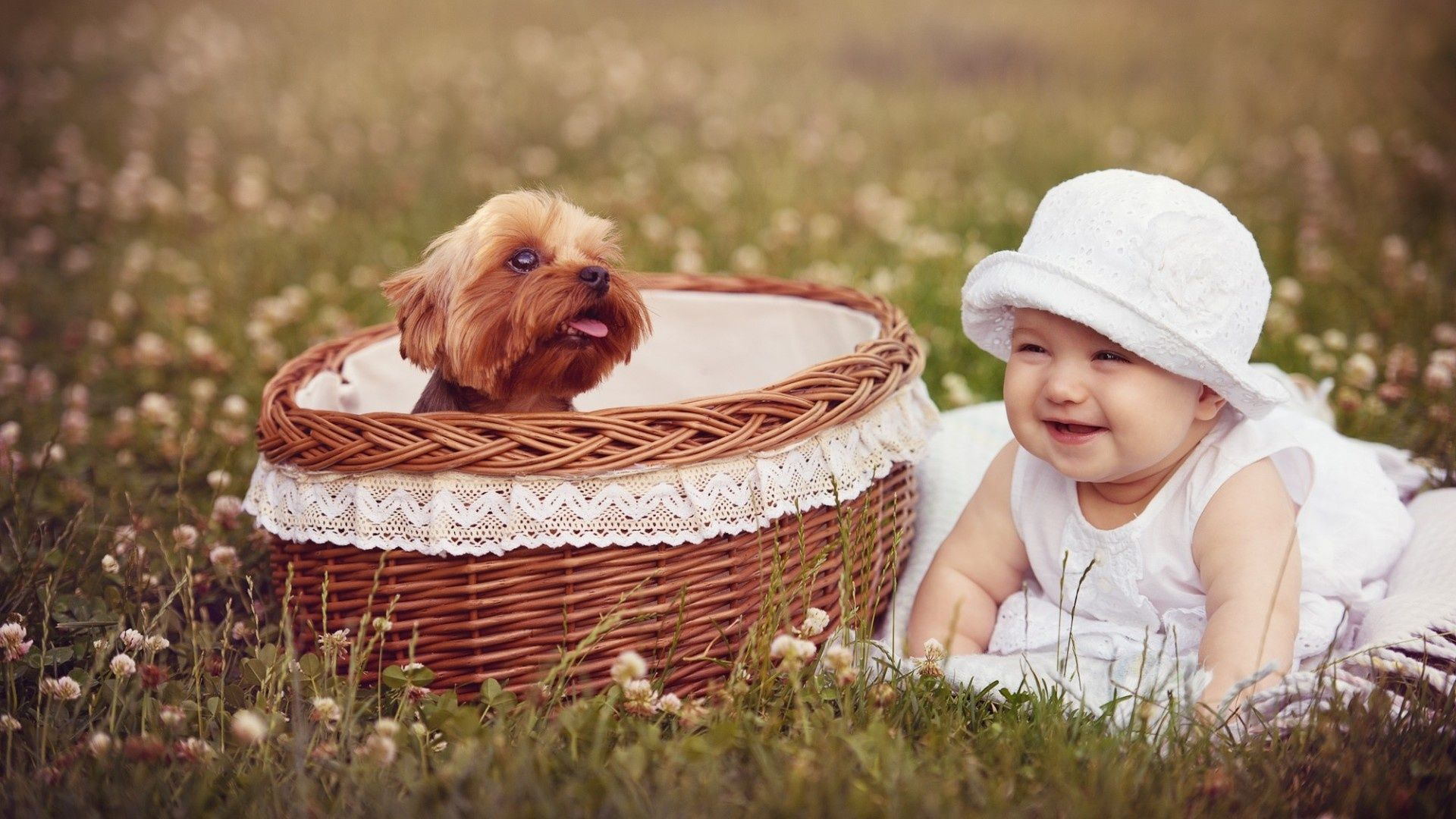 pin by hdpicorner on desktop wallpapers cute baby wallpaper baby