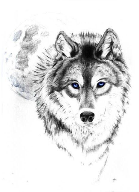 Lobo Parte 2 Tattoo Tatuagem Ideias Desenhos Desenho De