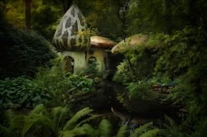mushroom houses by cora