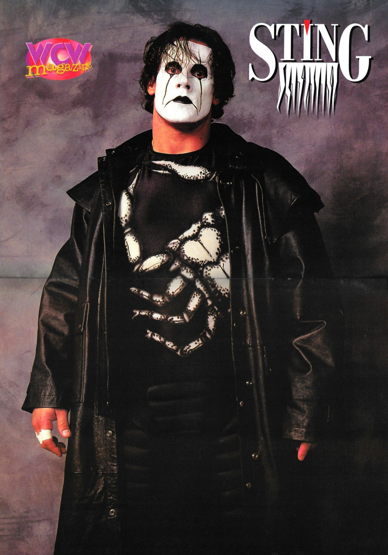 the franchise of wcw sting wwe pics wrestling professional