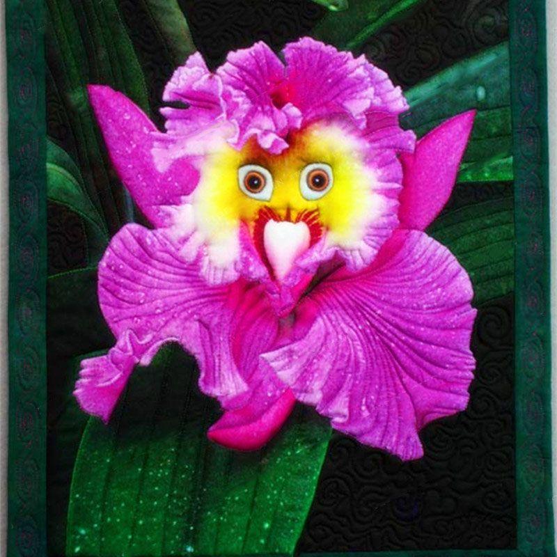 100 Pcs/Pack Monkey Face Orchid Seeds Home Garden Bonsai Plants Flowers - -   13 plants Flowers articles ideas