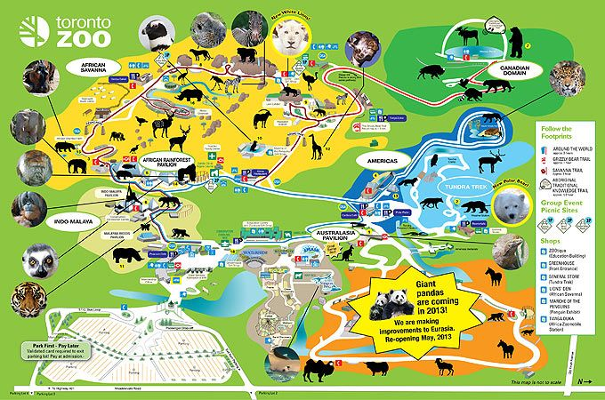 Great Zoo And I Love The Photos Of The Animals On The Map Toronto Zoo Zoo Map Illustrated Map
