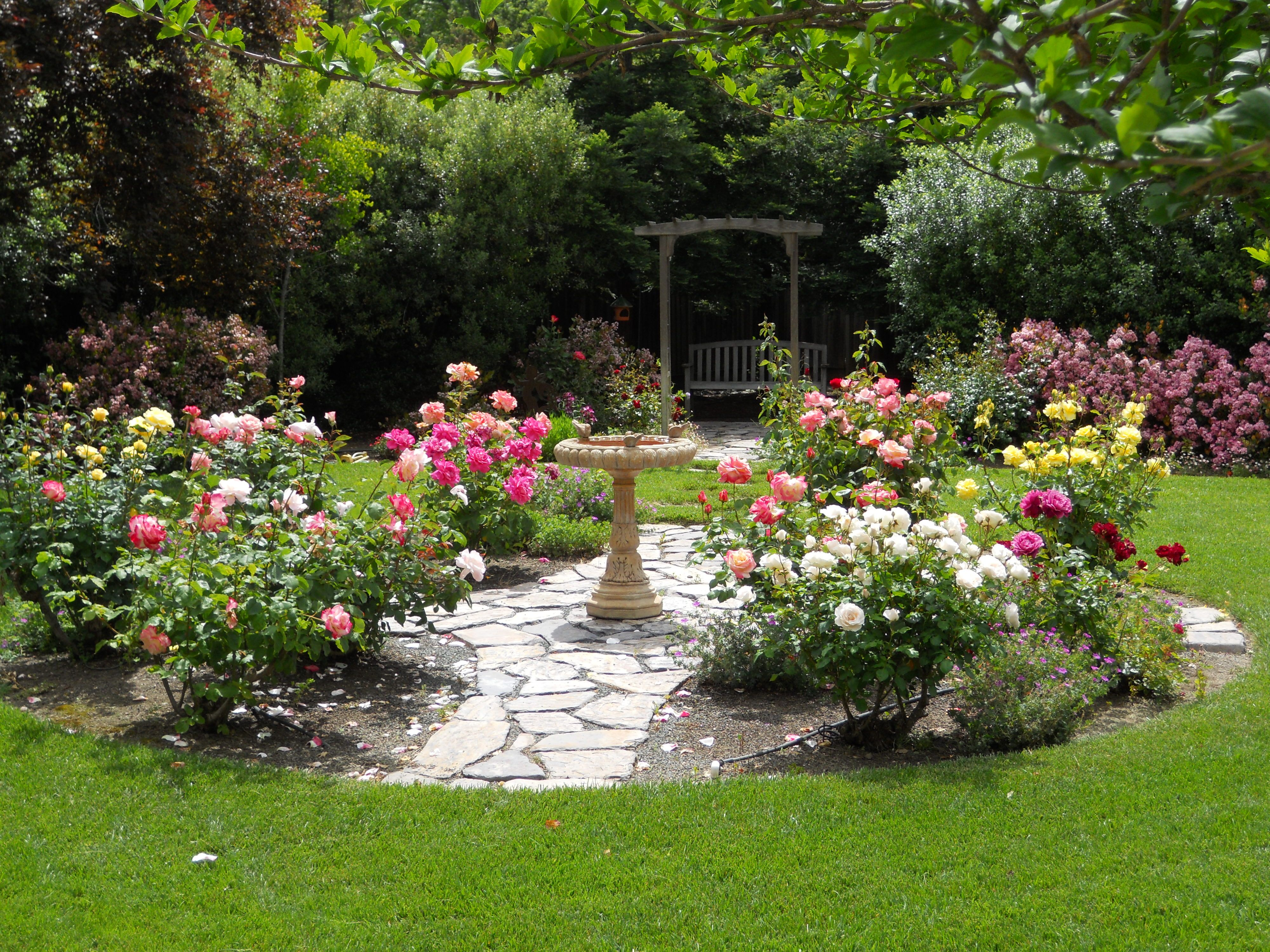 Simple design ideas rose garden plans flowers Landscape garden design ideas