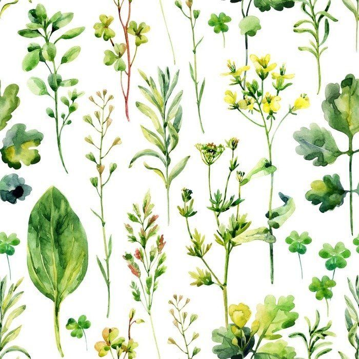 Watercolor meadow weeds and herbs seamless pattern Self