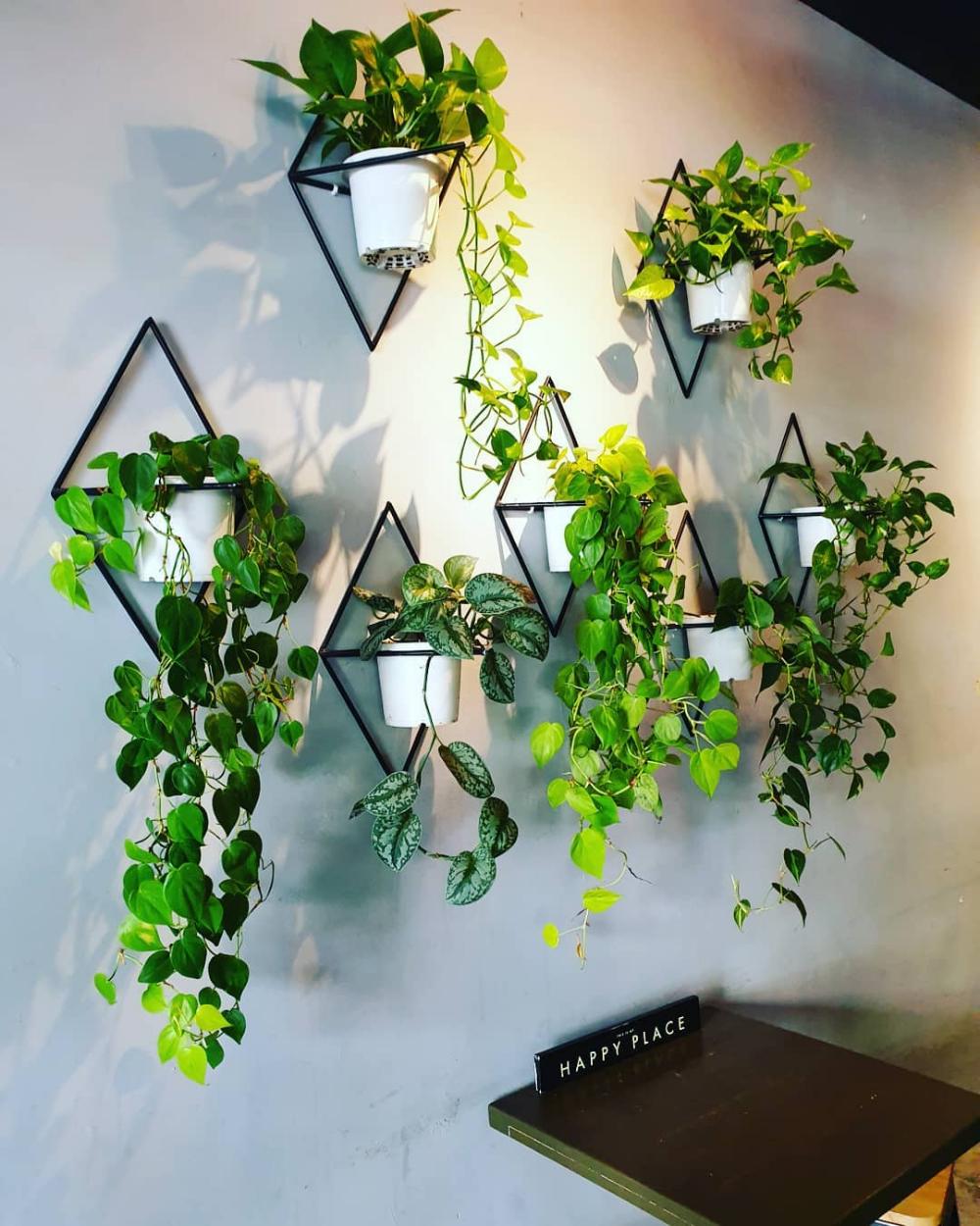11 creative ways to display indoor plants
