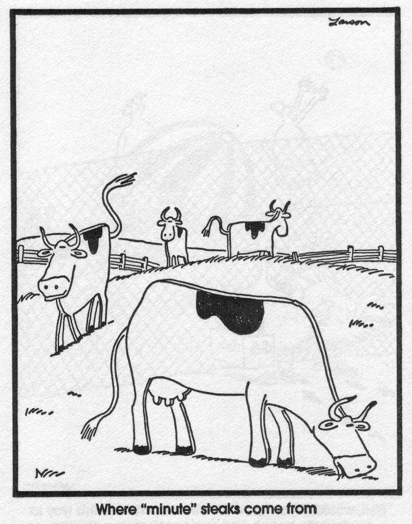 Pin by Let\'s Shrink Obesity on Shrinker Humor | Pinterest | Gary ...