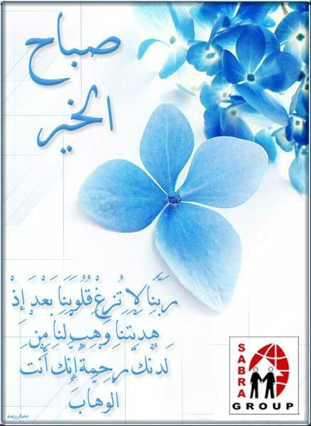 Sabra Legal Training On Twitter Good Morning Images Flowers Good Morning Cards Islamic Wallpaper Hd