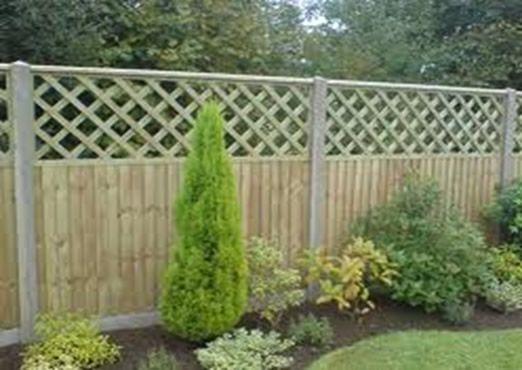 Trellis Fence Topper   Google Search