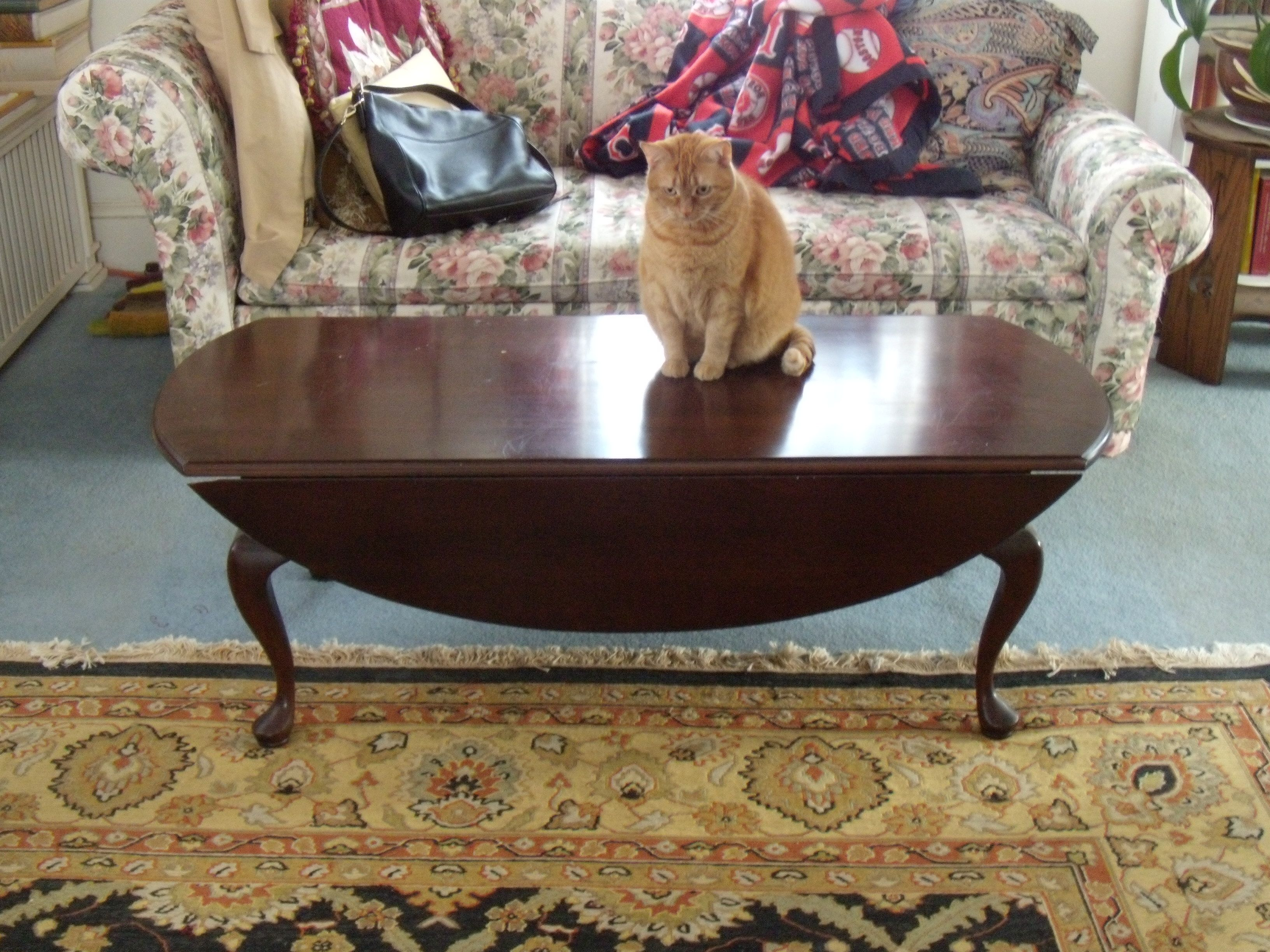 """Queen Anne"""" coffee table"""