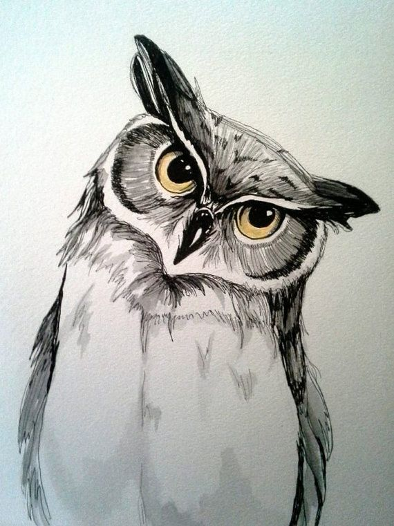 9x12 Original Pen And Watercolor Owl Painting Tiere Malen Eule