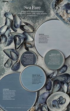 Sea Fare - Cool, calm color palette from Better Homes & Gardens (August 2014