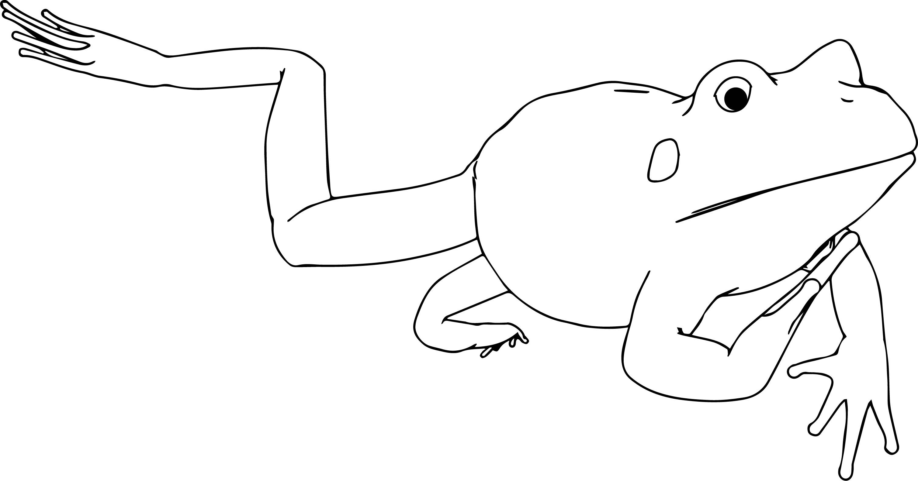 Cool Realistic Frog Black White Coloring Page