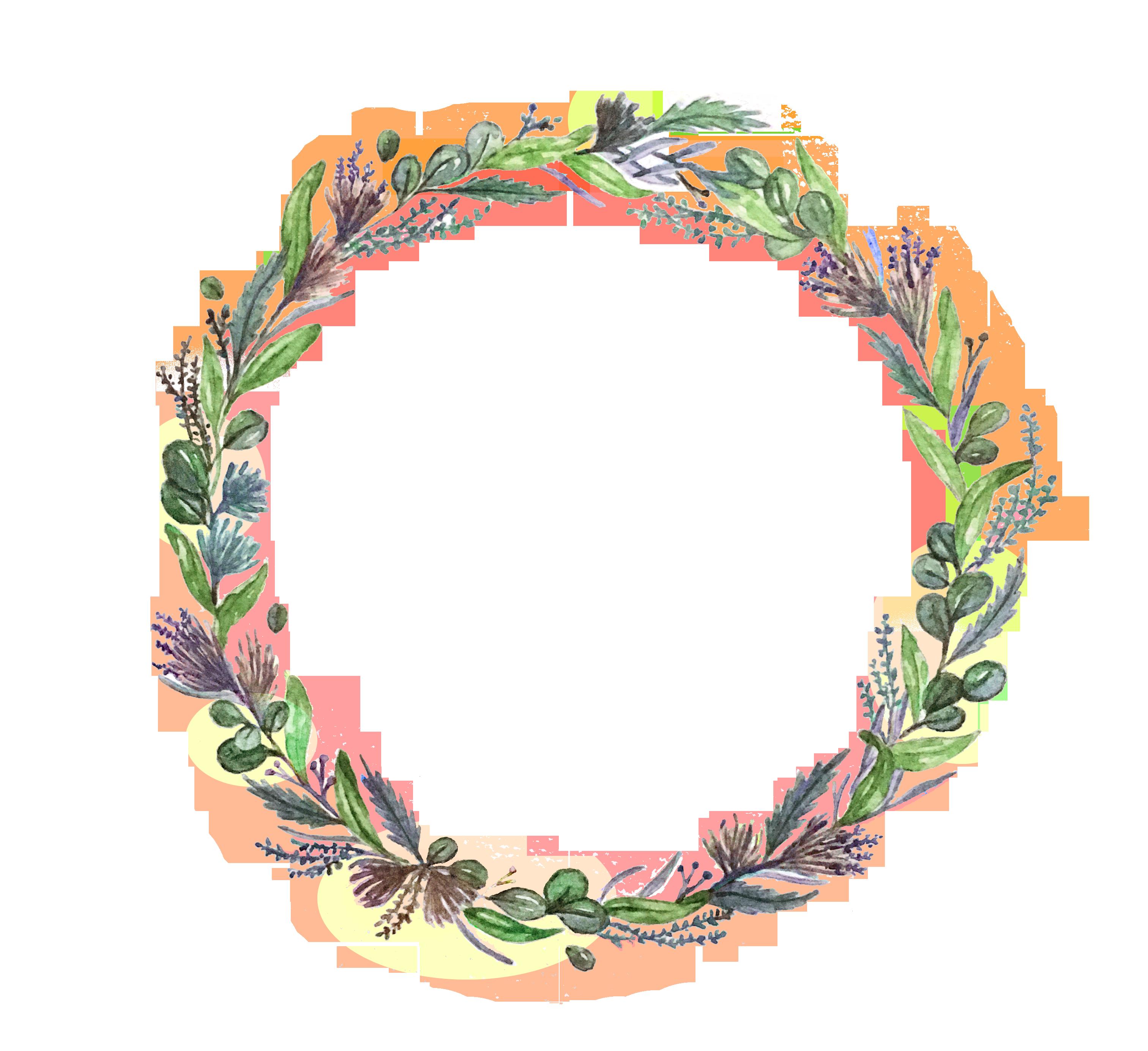 Floral Illustration illustration wedding floral
