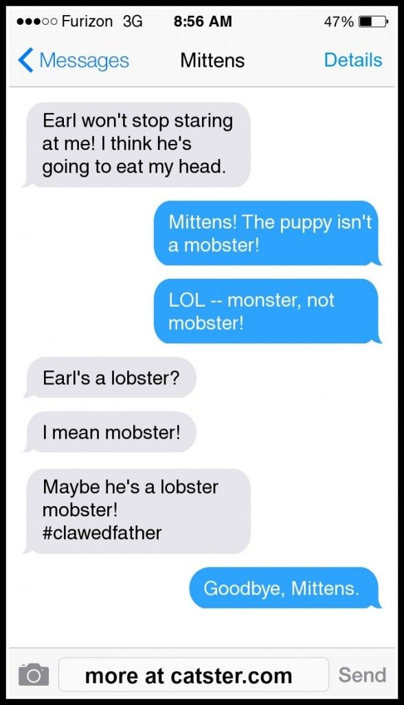 """""""Enough with the infestation jokes."""" ~  mobster-mittens-earl-autocorrect"""