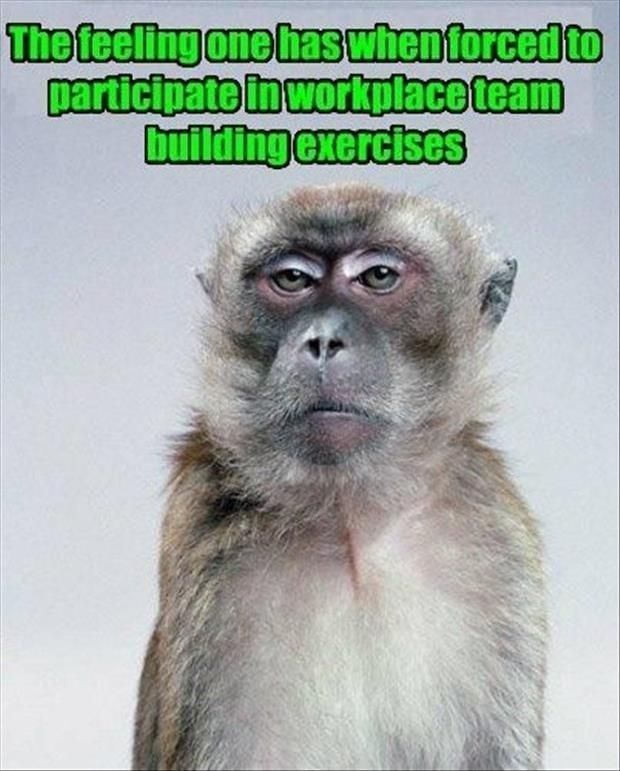 Ice Breakers Team Building Teacher Memes Funny Teaching Humor Teaching Memes