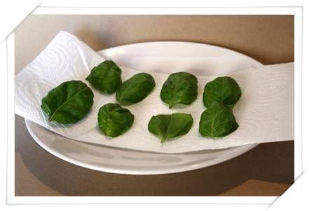 Come essiccare le erbe aromatiche con il microonde foto spezie herbs microwave e drying herbs - Cucinare con il microonde whirlpool ...