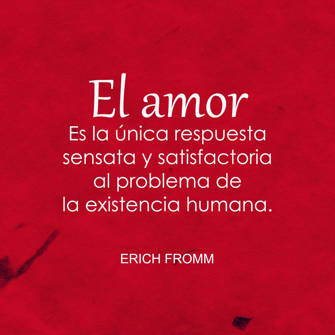 Erich Fromm Palabras De Reflexion Frases De Identidad Frases