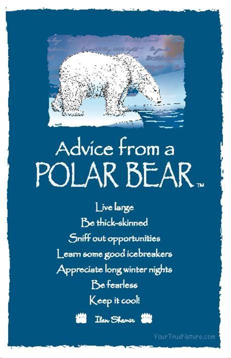 Spirit Totem Animals Advice From A Polar Bear Bears