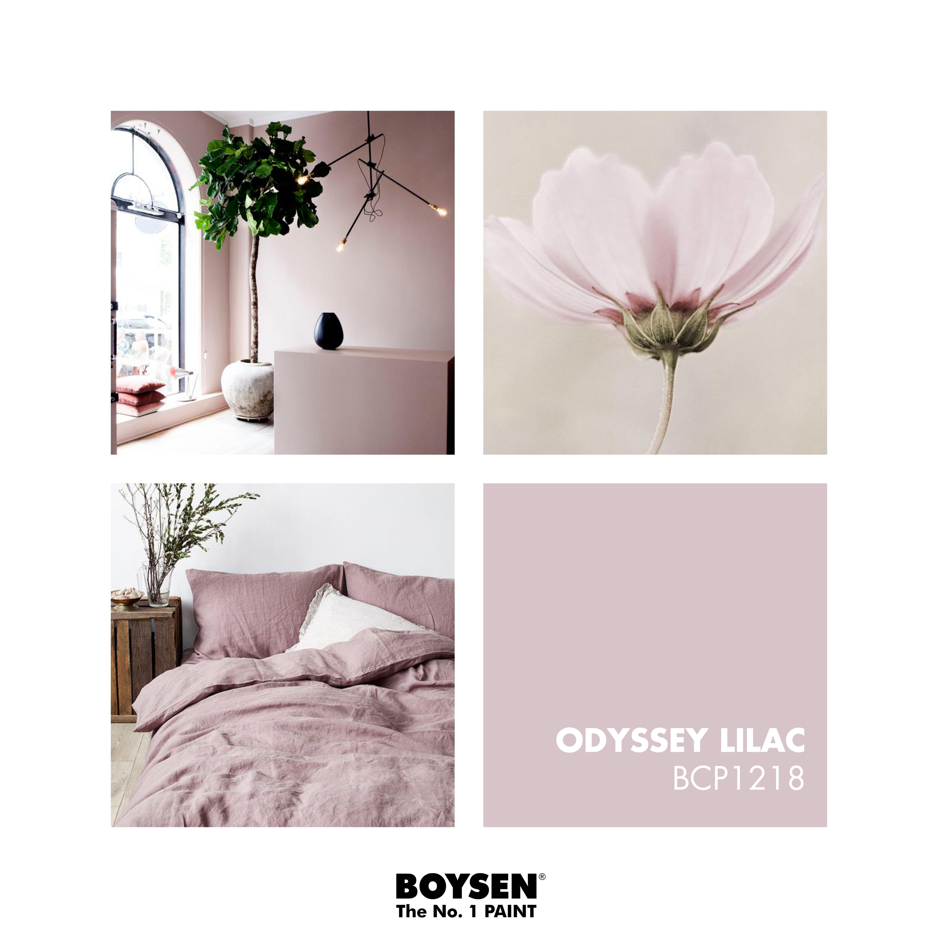 Featured Color BOYSEN Palette BCP1218 Odyssey Lilac Boysenpaints Boysen