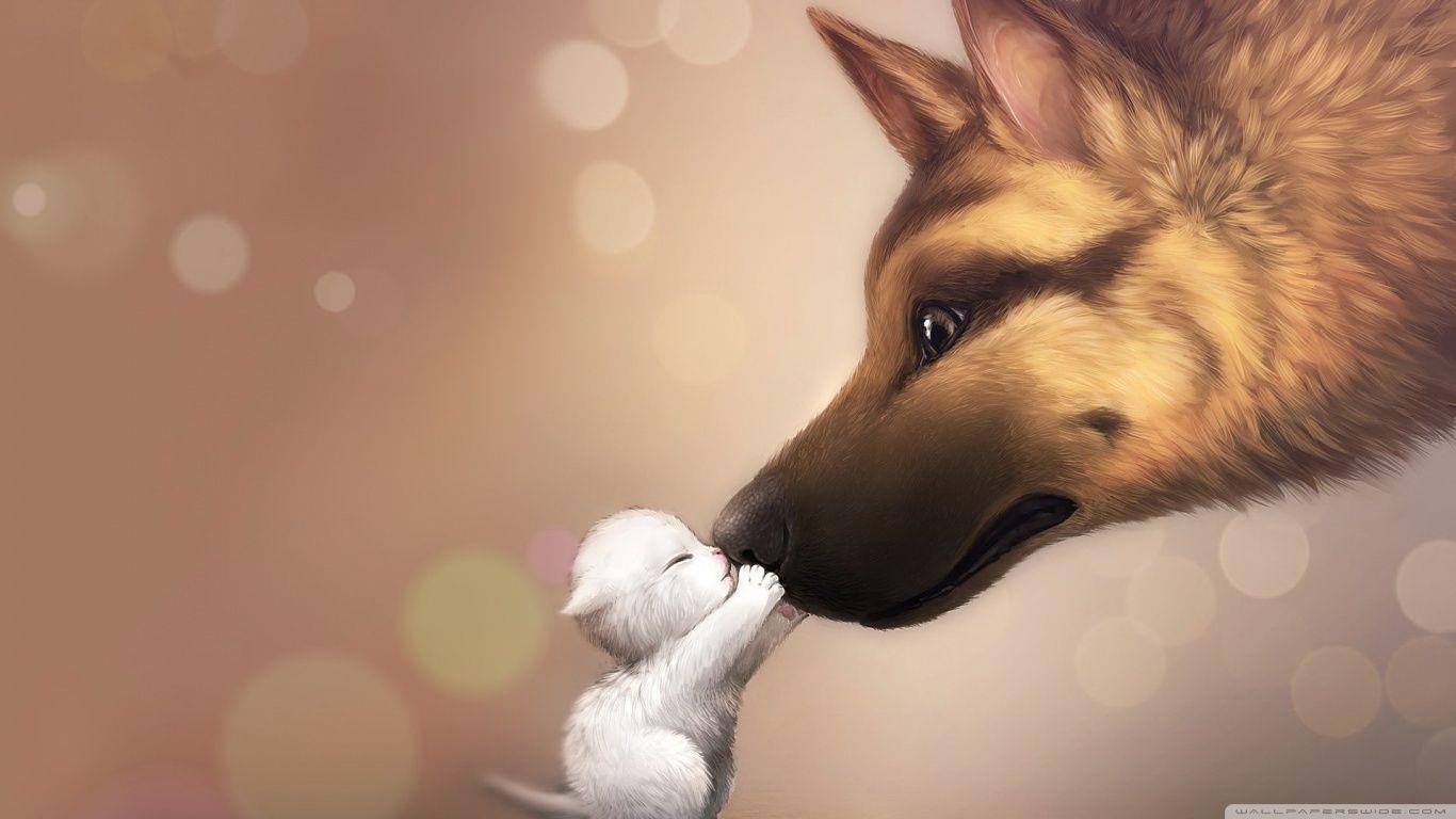 Cute Kiss 4k Hd Desktop Wallpaper For 4k Ultra Hd Tv Wide Animals Beautiful Cute Creatures Animals