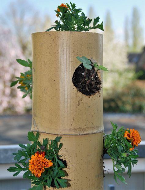 Salatbaum 2 0 Nachhaltiger Und Plastikfrei Aus Bambus Attensaat Vertikaler Garten Diy Topf Und Kubelpflanzen Kleinen Raumgartnerei