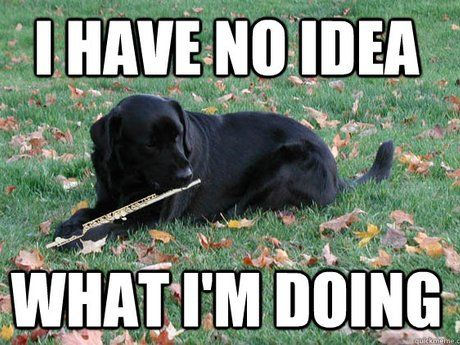 The 10 worst things about playing the flute | Music jokes ...