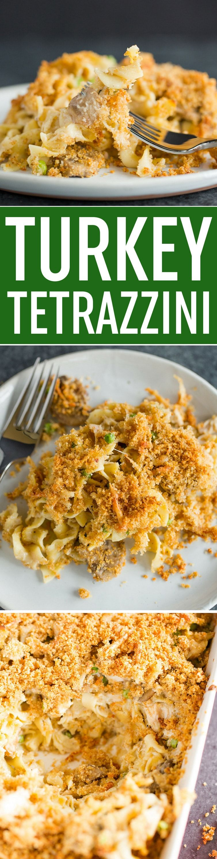 Photo of Turkey Tetrazzini