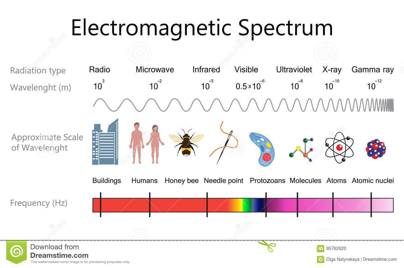 Photo About Electromagnetic Spectrum And Wavelengths Diagram Vector Illustration Flat Design 95762 Electromagnetic Spectrum Vector Illustration Illustration