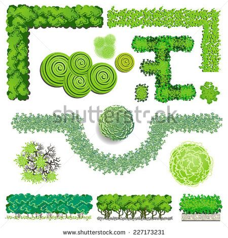 Trees and bush item top view for landscape design, vector