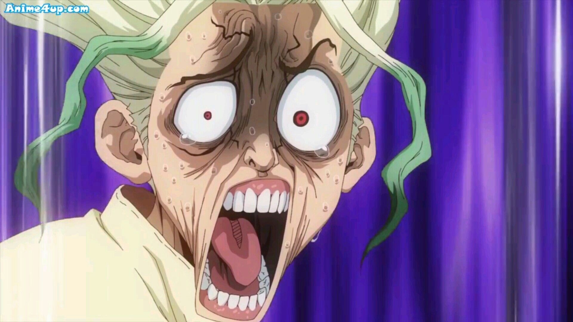 Dr Stone Funny Face Wallpaper Anime Faces Expressions Anime Anime Expressions