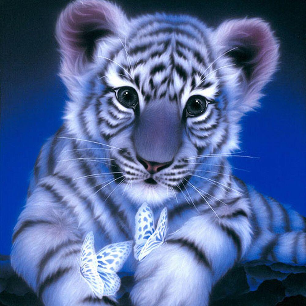 Tiger 5d Diamant Diy Painting Diamant Kreuztich Stickerei Malerei