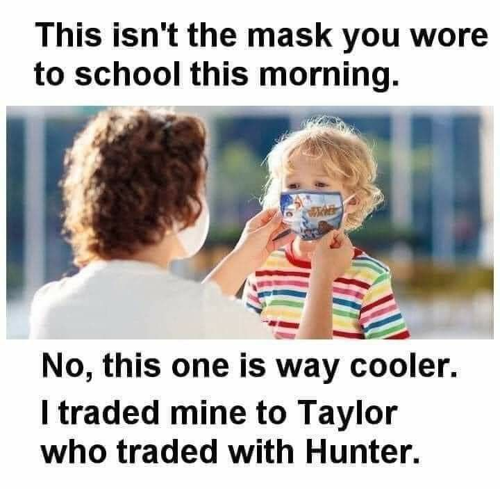 Pin By Thetexasrobin On 2020 In 2020 Teacher Humor Funny Memes Laugh Out Loud