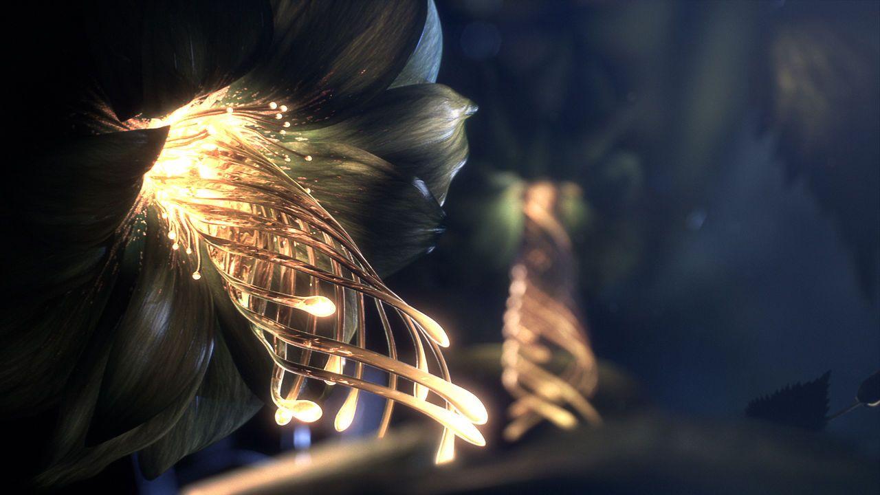 "Alexander Keith's ""Metamorphosis"" on Vimeo Motion design"