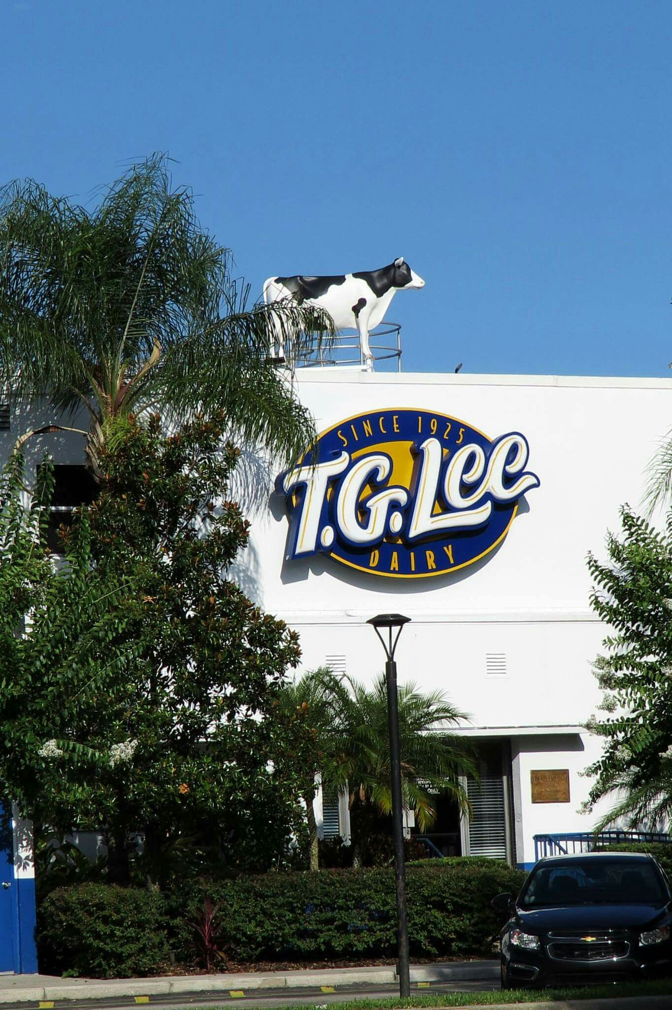 Tg Lee Dairy In East Orlando Colonial Mall Area Old Florida Vintage Florida Florida Travel