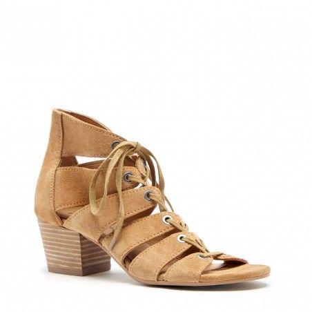 Genevie   Sugar lace, heels Block heels lace, and Braun a0ec56