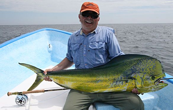 how to catch dolphin fish
