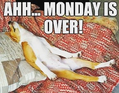 We all know how this feels! #Mondays #finallyover #doneanddusted #week4 #chocaffair