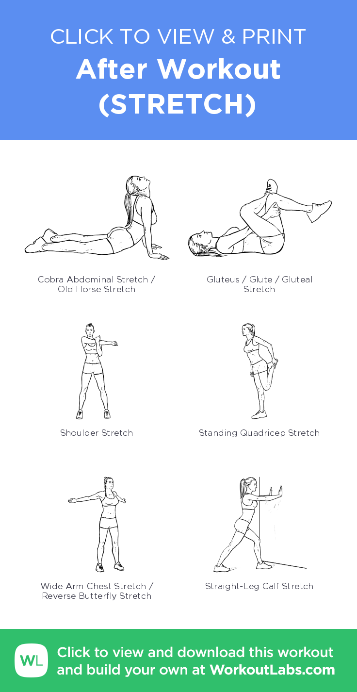 After Workout (STRETCH) · Free workout by WorkoutLabs Fit