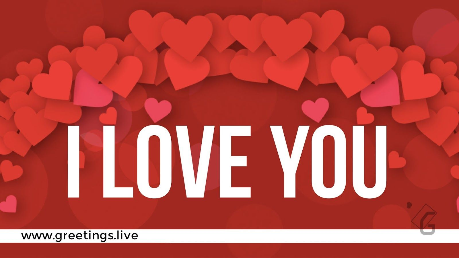 I Love You Greeting Live Love Proposal Latest Proposals