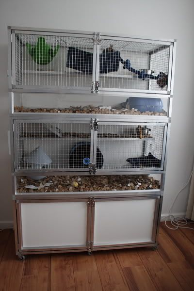 Hamster Supplies Bedding Food Toys Pets At Home