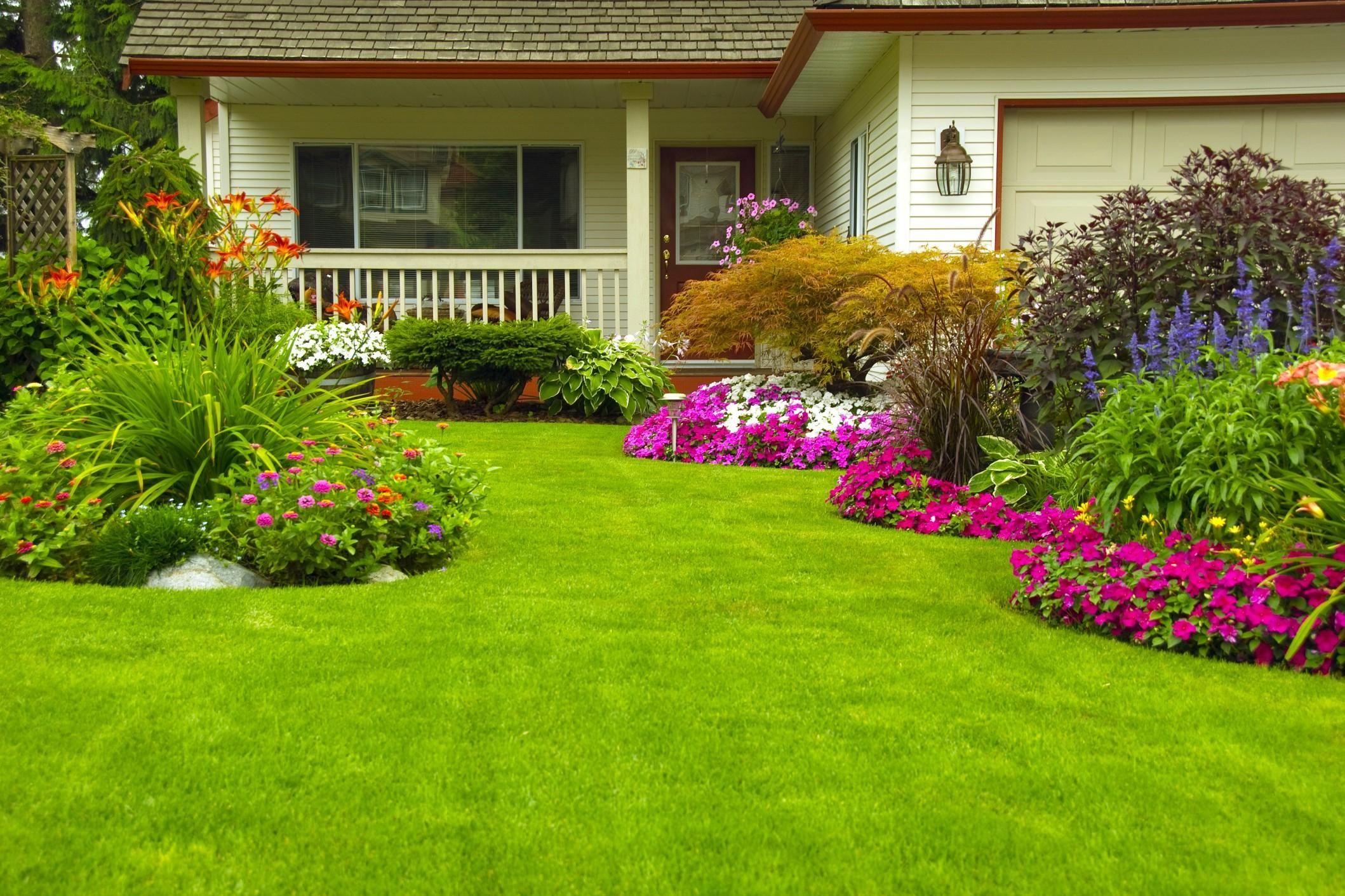Sistemare Giardino Di Casa come decorare le aiuole del giardino | giardino, aiuole