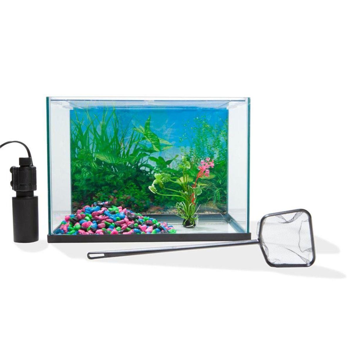 20l Aquarium Starter Kit Kmart Aquarium Starter Kit Kit