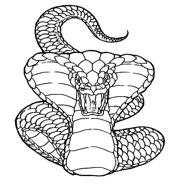 Free Printable 10 Cobra Snake Coloring Pages | Snake ...