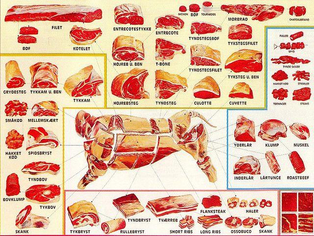c51f2af97e697b61d69212e21030c847 Venison Cuts Diagram on horse cuts diagram, bear meat diagram, goat meat cuts diagram, beef cuts diagram, lamb meat cuts diagram, sheep cuts diagram, fish cuts diagram, cuts of meat diagram, wild boar cuts diagram, rabbit cuts diagram, elk meat parts diagram, turkey cuts diagram, vegetable cuts diagram, shellfish cuts diagram, elk meat cuts diagram, pork cuts diagram, bear cuts diagram, duck cuts diagram, deer diagram, chicken cuts diagram,