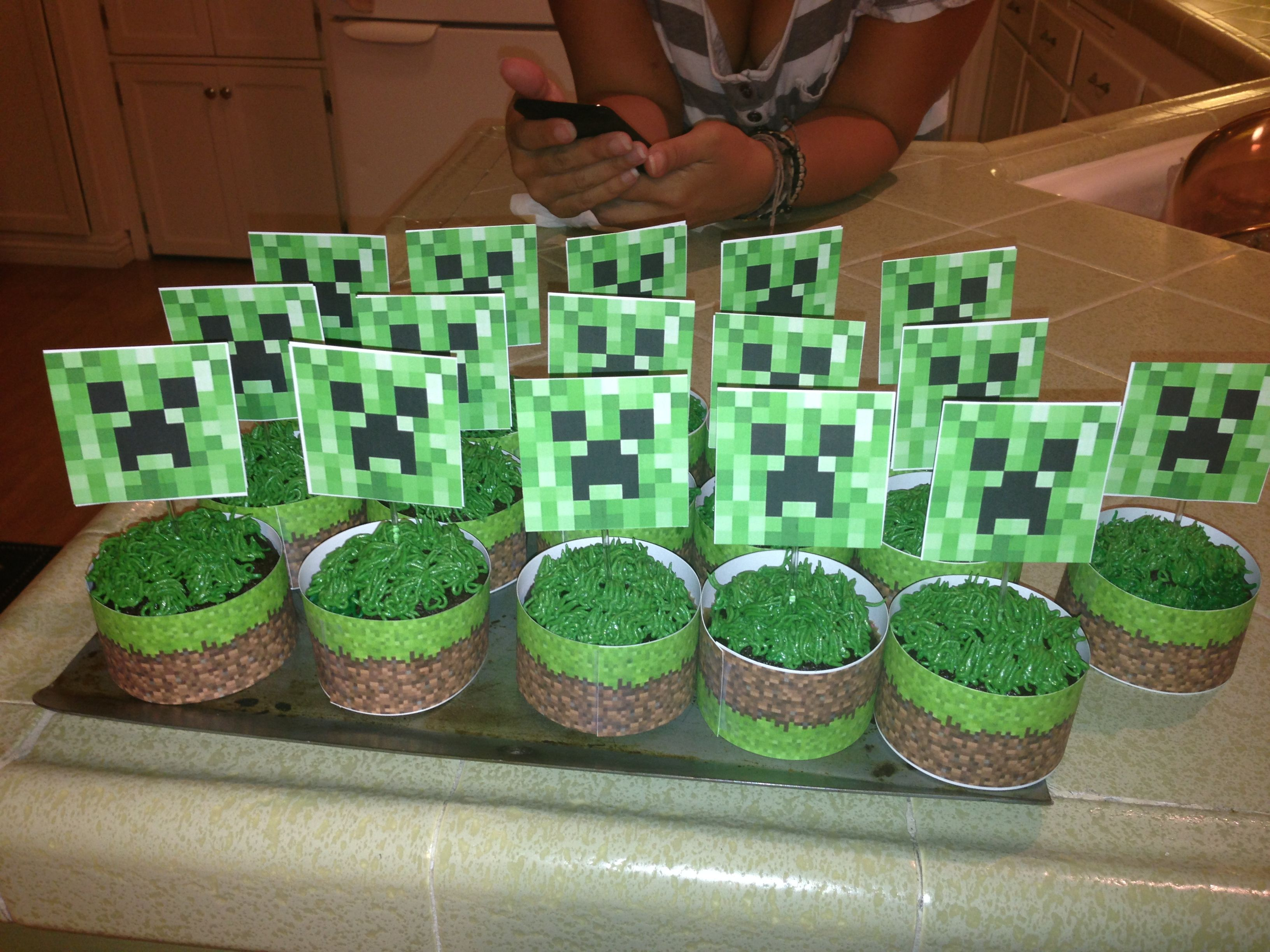 Minecraft Creeper Cupcakes | My DIY | Pinterest ...