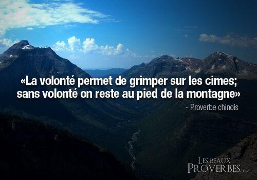 La Volonte Proverbe Perseverance Citation