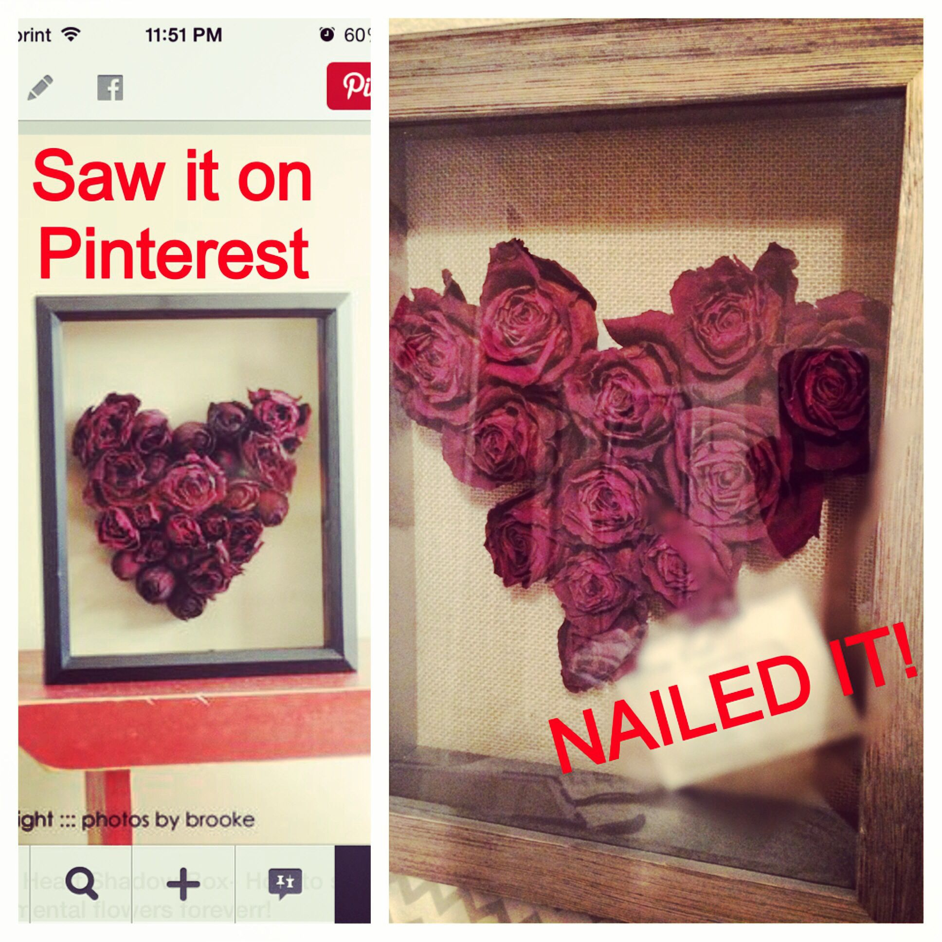 Super Easy To Do Hung Roses Upside Down X2 Weeks In Closet Dark