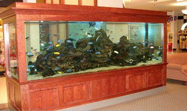 oceanariums - Aquariums Restaurant Fresh Holding Lobster Tank Seafood Manufacturer Custom Made