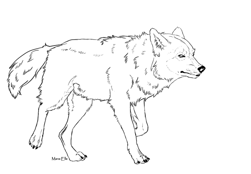 Wolf Walk Free Lineart By Mara Elle On Deviantart Wolf Drawing Dog Coloring Page Pencil Drawings Of Animals