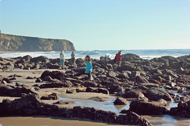 Tide Pools Salt Creek Beach In Dana Point Ca Loved Going Here For Elementary School Field T Southern California Hikes California Camping California Travel